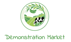 Demonstrationmarket